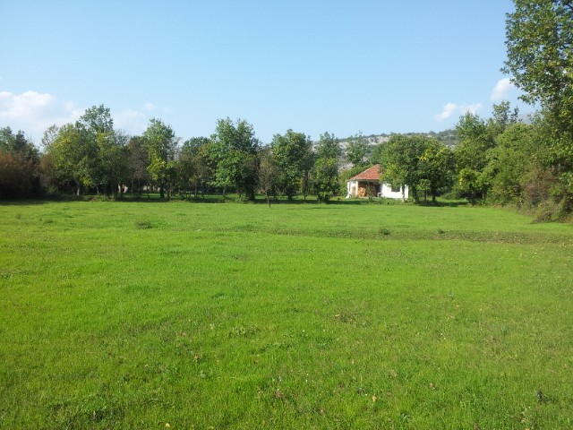 Bjelopavlići, Jelenak – Imanje 20000m², sa kućom